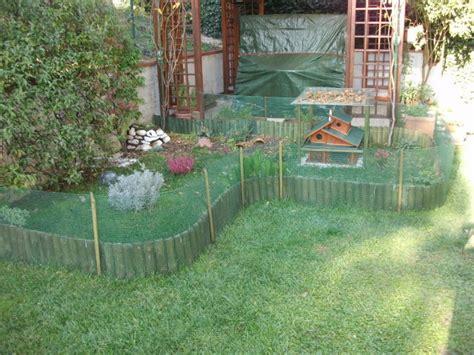 recinto per tartarughe in giardino consiglio convivenza specie diverse pagina 2