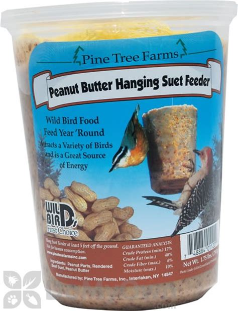 pine tree farms peanut butter hanging suet feeder 1 75 lb