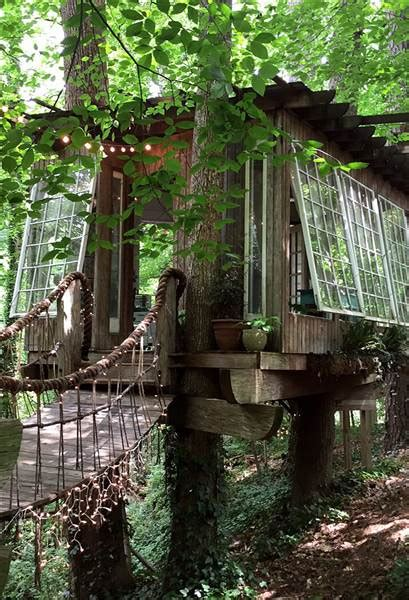 tree house airbnb this airbnb treehouse is the most wished for listing today com