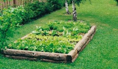 fare orto in giardino fondi di caff 232 per concimare l orto vita in cagna
