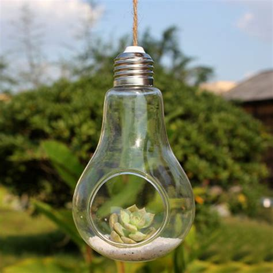 new glass bulb l shape flower water plant hanging vase