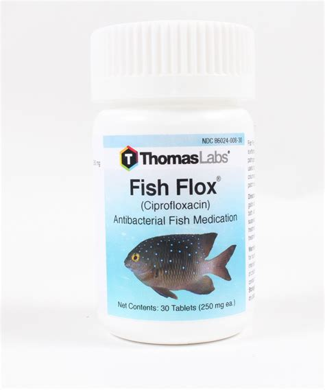 Shelf Of Ciprofloxacin by Fish Flox Ciprofloxacin 250mg 30 Count
