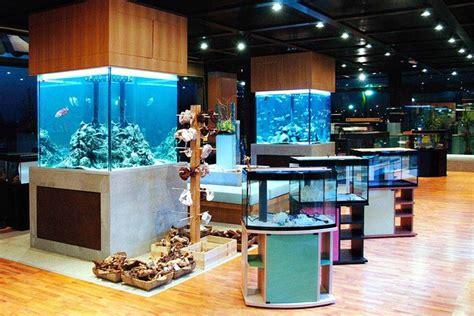 arredo per acquari acquari da arredamento accessori per acquario acquari