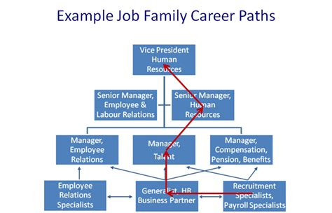 career pathways diagram career pathways diagram 28 images hr family career