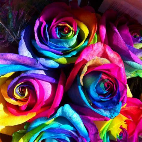 tie dye roses crafts