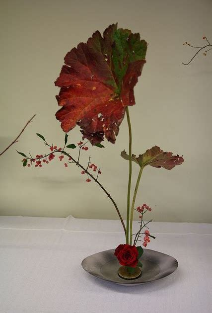 Wakai Japan 3w R B my flower arrangement ideas ikebana japanese flower