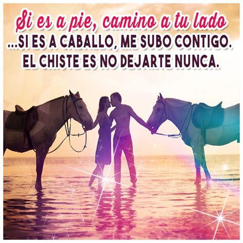 mujer que hace el amor con caballo imagenes de amor de animales ositos perritos caballos