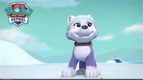 paw patrol puppies paw patrol the new pup everest