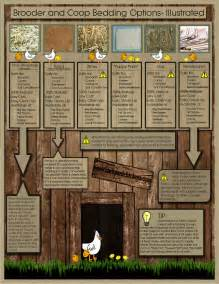 some ideas for chicken bedding animals forums