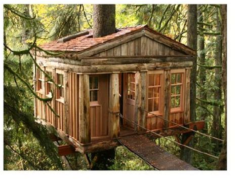 cool tree house designs cool tree houses ideas as your precious home decorating homescorner com