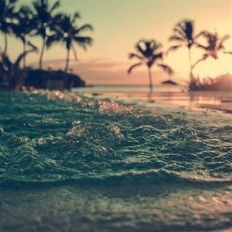 tropical house music tropical house playlist 20 tracks to bring the vibes