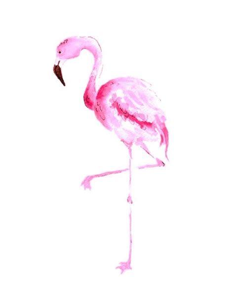 wallpaper tumblr flamingo flamingo art print tumblr