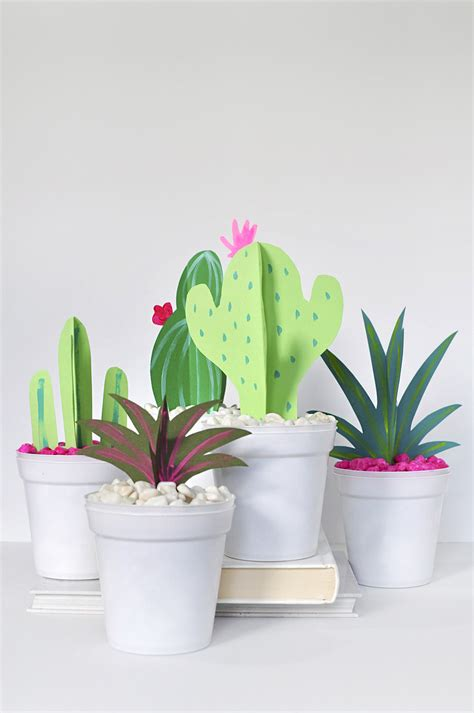 Modern 3 D Paper Cactus Craft Paper Cactus Template