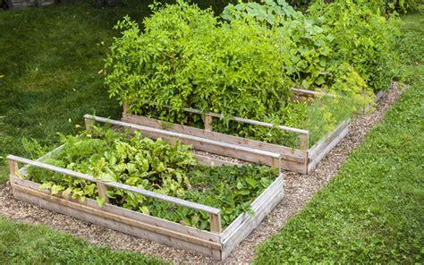 wood for raised bed vegetable garden 15 raised wooden garden bed designs garden club