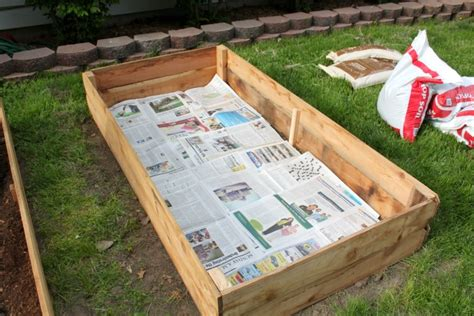 creating a raised bed vegetable garden create a successful raised vegetable garden with the right