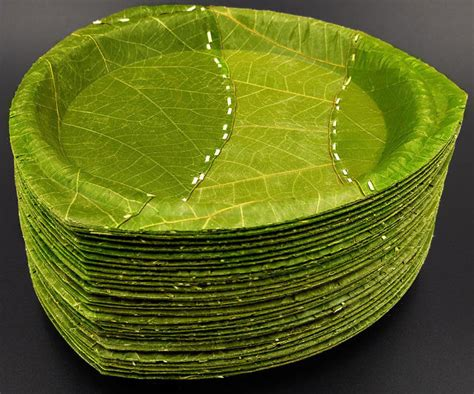 Leaf Plates 1 less by design less waste less hardship less resources