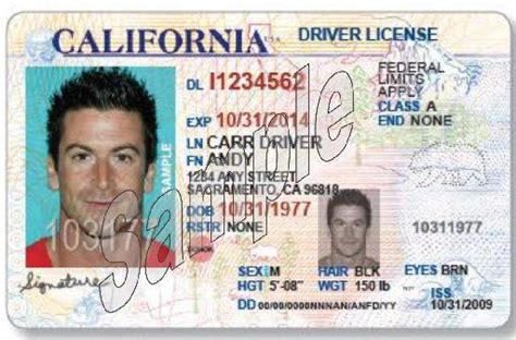 california id template a california drivers license will not get you through