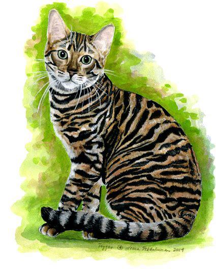 paint like cat toyger looks