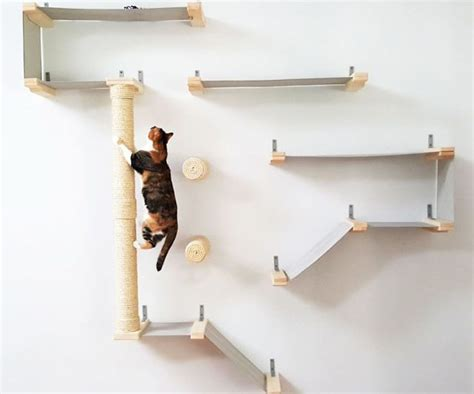 wall shelves design wall shelving for cats and ledges cat