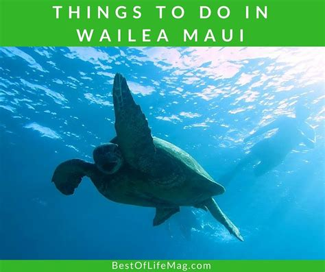 things to do on maui 25 things to do in wailea maui the best of life