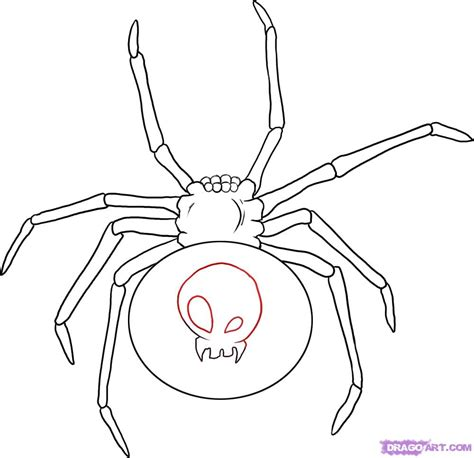 How To Draw A How To Draw A Black Widow Step By Step Bugs Animals