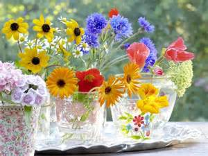 fresh cut flowers fresh cut flowers pictures photos and images for and