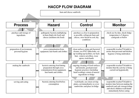 4 Best Images Of Haccp Flow Chart Template Printable Blank Haccp Flow Chart Template Haccp Haccp Log Templates