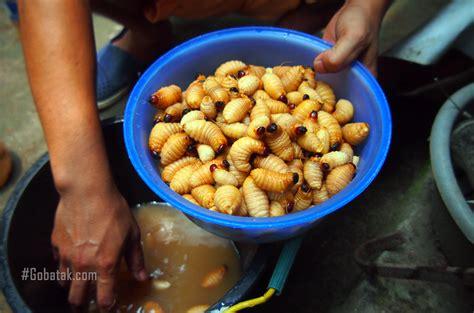 Kaos Kopi Atau Mati makanan terunik kidu kuliner unik dari ulat bagot atau