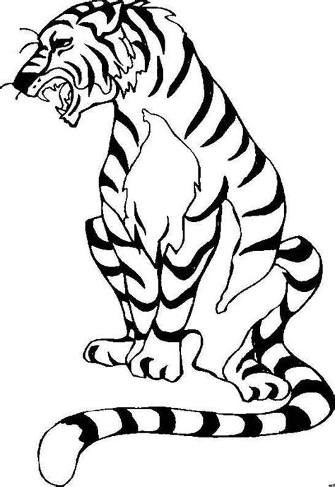 coloring pages lions tigers coloring pages cats lions tigers picture 16
