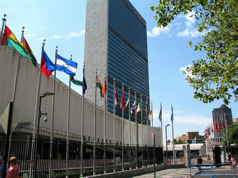 United Nations New York Mba by Amanda Dogs