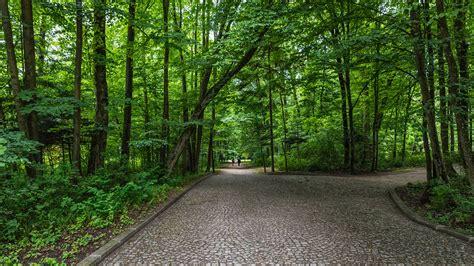 beautiful nature beautiful nature wallpaper big size 20 with łazienki park