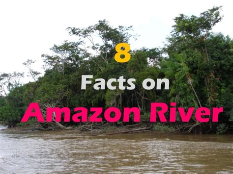8 Facts On by 8 Facts On River