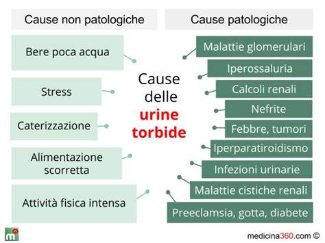 acido urico alimentazione corretta acido urico nelle urine alimentazione leer m 225 s 237 culos