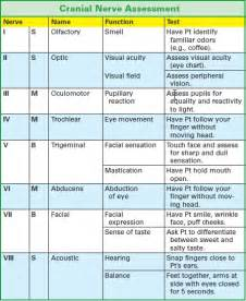 cranial nerve assessment pictures to pin on pinterest
