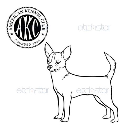 coloring page of chihuahua chihuahua coloring pages images patterns