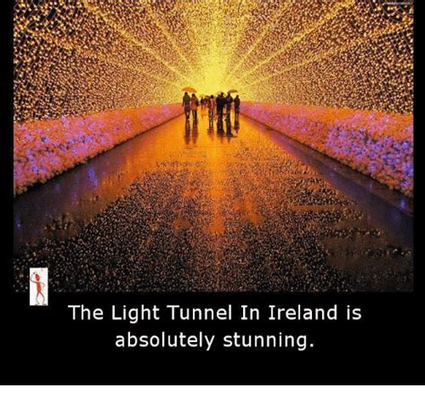 The Light Of by The Light Tunnel In Ireland Is Absolutely Stunning Meme