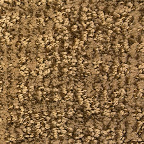 dixie home aspects carpet
