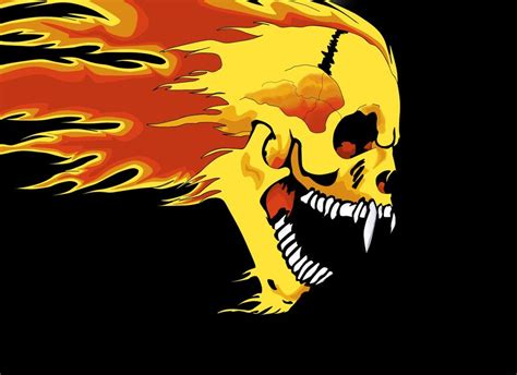 Metallica Skull metallica skull logo foto 2017