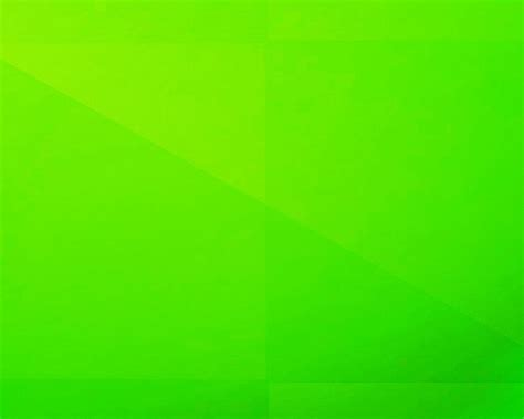 lime green wall image gallery neon green solid color