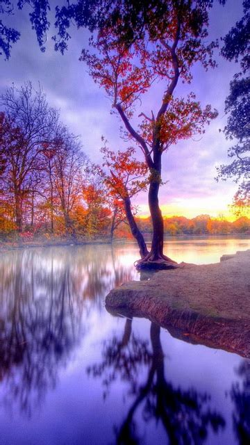 wallpapers for android mobile hd nature beautiful nature wallpaper for android mobile wallpaper