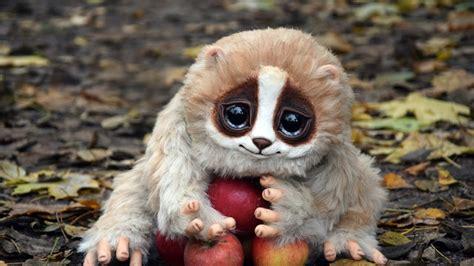 imagenes de xeso animal 10個可能會奪去你性命的可愛動物 youtube