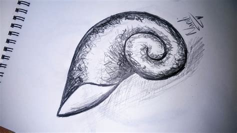 How To Draw A Spiral Shell how to draw a spiral shell
