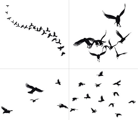crows in flight png stock by roy3d on deviantart