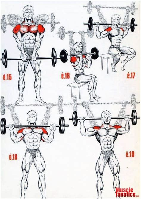 check this effective workout program like and