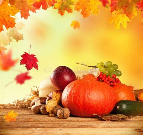 autumn harvested fruit  vegetable  wood stock image