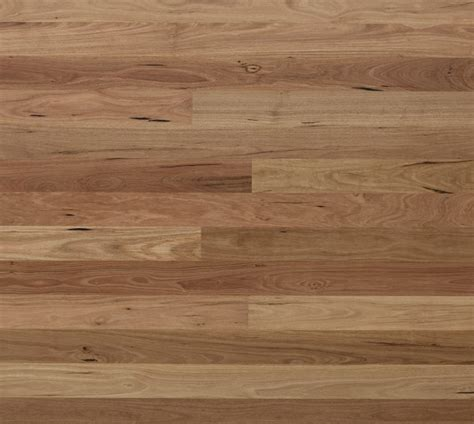 blackbutt timber flooring king