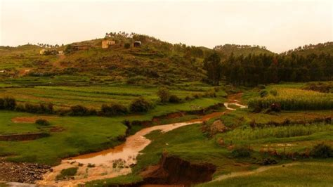 Eritrea Landscape Pictures Picture Of The Day Green Landscape In Keren Area