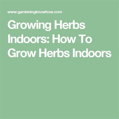 how to grow herbs indoors 10 ideas about growing herbs indoors on pinterest