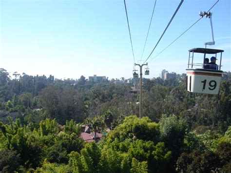 www zoo section com sky ride at san diego zoo pictures to pin on pinterest