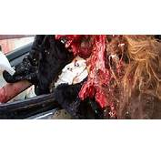 In 2006 Nikki Catsouras 18 Died A Car Crash After